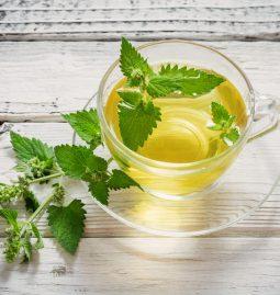 zioła i herbaty ziołowe